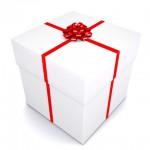 Pemenang Giveaway Blog Penyu Biru dot com