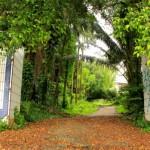 Pintu Masuk Villa Nabila 150x150 Apa Ada Pada WWW1